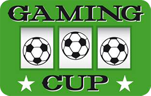 Gaming Cup